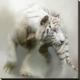 Tigre blanc Tableau sur toile par Paul Miners