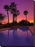Arizona Palms II Tableau sur toile par AJ Messier