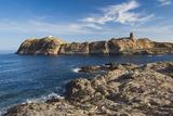 Lighthouse and Tower, Ile De La Pietra, Ile Rousse, Corsica, France Papier Photo par Walter Bibikow