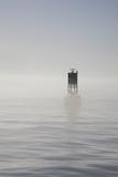 Buoy with Sea Lions, Long Beach Harbor, California, USA Papier Photo par Peter Bennett