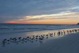 Cloudy Sunset on Crescent Beach  Siesta Key  Sarasota  Florida  USA