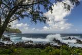 Waves Crashing Upon Rocks  Laupahoehoe Park  Hawaii  USA