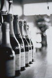 Champagne Bottles in a Row Papier Photo par Walter Bibikow