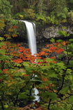 Autumn at South Falls  Silver Falls State Park  Oregon  USA