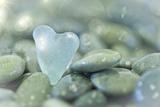 Heart-Shaped Beach Glass and Wet Rocks, Seabeck, Washington, USA Papier Photo par Jaynes Gallery