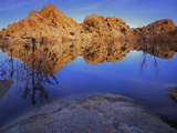 Pond in Joshua Tree National Park  Barker Tank  California  USA