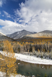 Flathead River in Fall Colors  Glacier National Park  Montana  USA