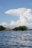 Beach at Height of the Wet Season  Alter Do Chao  Amazon  Brazil