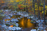 Fall Foliage Along Little River  Smoky Mountains NP  Tennessee  USA