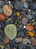 Stones  Lopez Island  Agate Beach County  Washington  USA