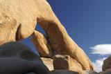 Arch Rock  Arch Rock Trail  Joshua Tree National Park  California  USA