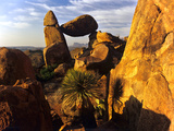 Rock Formations in Grapevine Hills  Big Bend National Park  Texas  USA