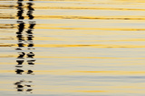 Abstract Reflections in San Diego Harbort  San Diego  California  USA