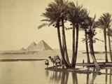 The Pyramids  1860-69