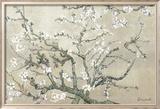 Branches d'amandier en fleurs, Saint-Rémy, vers1890 - tonalité brun beige Reproduction encadrée par Vincent Van Gogh