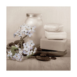 Hydrangea and Soap Reproduction d'art par Julie Greenwood
