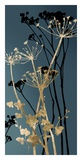 Twilight Botanicals I