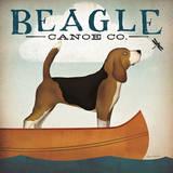 Beagle Canoe Co
