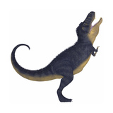 Tyranosaurus Rex  a Large Carnivore of the Cretaceous Period
