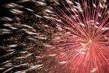 Fireworks Bloom Like a Flower in the Night Sky in Kobe