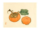 Two Persimmons