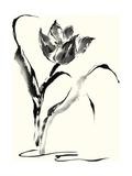 Studies in Ink - Tulip