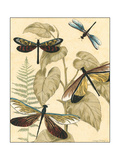 Small Graphic Dragonflies II
