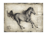 Roman Horse I