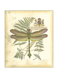 Mini Regal Dragonfly III
