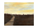Sunrise Stroll II