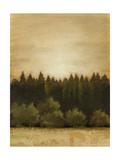 Treeline Sunset I