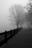 Promenade in the Mist