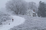 A Man and Dog Walk by a Farmhouse at Woodlawn, a Tract of Upland Meadows and Woods Papier Photo par Michael Melford