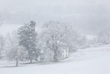 Snowfall on a Farmhouse at Woodlawn, a 1,100 Tract of Upland Meadows and Woods Papier Photo par Michael Melford