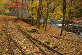 Autumn Leaves Cover Railroad Tracks at the Dupont Powder Mill Papier Photo par Michael Melford