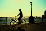Man on a Bicycle  Battery Park  New York City