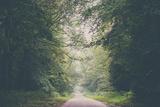 Wanderlust (Part Iii)