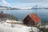 Boathouse on the Island of Kvaloya (Whale Island)  Troms  Norway  Scandinavia  Europe