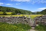 Dry Stone Wall and Gate in Meadow at Muker