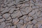 Dry River Bed  Skeleton Coast Park  Namibia  Africa