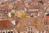 Looking Out over the Rooftops of Dijon  Burgundy  France  Europe