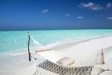 Hammock on Tropical Beach  Maldives  Indian Ocean  Asia