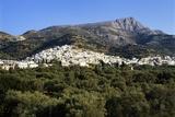 Filoti in Olive Groves  Tragea  Naxos  Cyclades  Greece