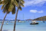 Boats in Cruz Bay  St John  United States Virgin Islands  West Indies  Caribbean  Central America