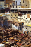 The Tanneries  Medina (Old Town)  Fes  Morocco  North Africa  Africa