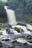 Thornton Force  Ingleton Waterfalls Walk  Yorkshire Dales National Park