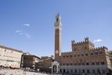 Piazza Del Campo  Palazzo Pubblico  Sienna  Tuscany  Italy