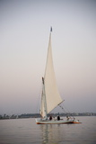 Felucca  River Nile  Egypt  North Africa  Africa