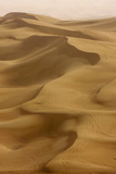 Sand Dunes  Dubai  United Arab Emirates  Middle East