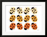Orange Lady Bug Family